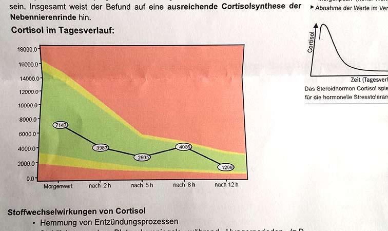 Cortisoltagesprofil nach Ernährungsumstellung und Candidabehandlung