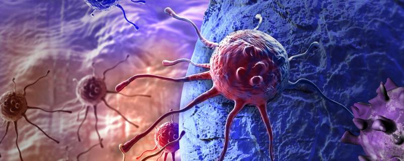 Hashimoto-Begleiterkrankungen: Typische Komorbiditäten und die Folgen für Ihre  Gesundheit