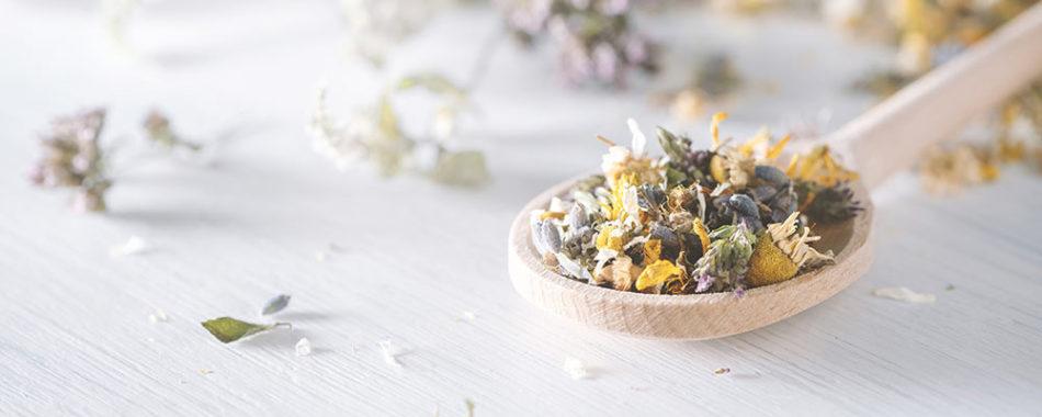 Heilpflanzen bei Hashimoto: Was hilft bei einer Überfunktion der Schilddrüse?