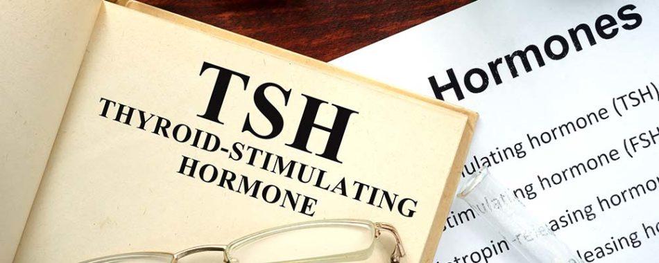 Mythos TSH:  Ein Blutwert, der bis heute stark überbewertet wird