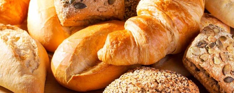 Warum Brot krank machen kann und nicht nur Gluten das große Problem sind